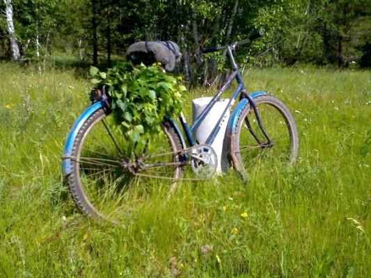 Край непуганных велосипедов