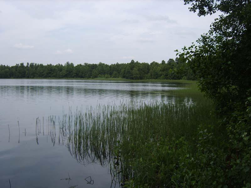 На «Риге-7» к озеру Глубокому